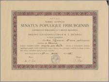 Ozdobny dyplom uzyskania licencjatu z orzecznictwa z prawa doktryn