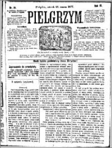 Pielgrzym, pismo religijne dla ludu 1877 nr 35