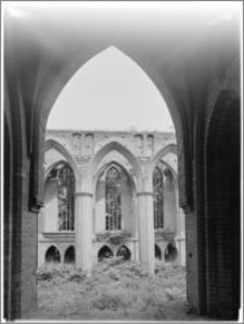 Chojna. Ruiny Kościoła Mariackiego - wnętrze
