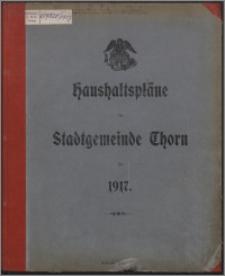 Haushaltspläne der Stadtgemeinde Thorn für 1917