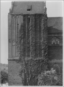 Stargard Szczeciński. Kościół parafialny [ob. Kolegiata NMP Królowej Świata]. Wieża