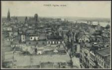 Toruń - widok ogólny