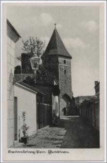 Lauenburg i. Pom. : Efeuturm