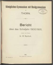 Bericht über das Schuljahr 1900/1901
