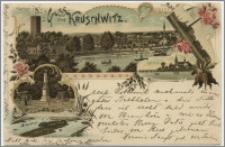 Gruss aus Kruschwitz : Zukerfabrik, Kath. Kirche, Kaiser-Denkmal, Insel Adelka i. Goplasee