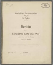Königliches Progymnasium (i. d. E.) zu Dt. Eylau. Bericht über die Schuljahre 1902 und 1903