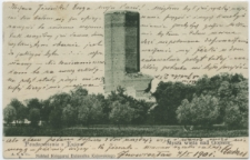 Mysza wieża nad Gopłem