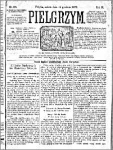 Pielgrzym, pismo religijne dla ludu 1877 nr 144