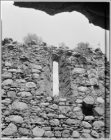 Papowo Biskupie [ruiny zamku]