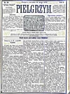 Pielgrzym, pismo religijne dla ludu 1878 nr 20