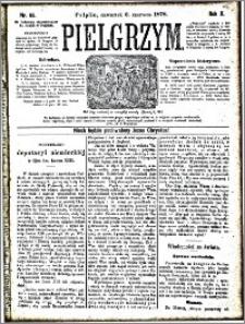 Pielgrzym, pismo religijne dla ludu 1878 nr 65