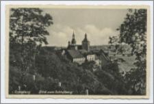 Graudenz. Blick vom Schloβberg