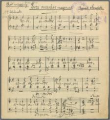 Ecce sacerdos magnus : chór mieszany