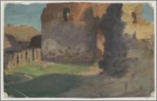 Ruiny zamku w Kownie