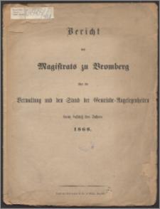 Bericht des Magistrats zu Bromberg über die Verwaltung und den Stand der Gemeinde-Angelegenheiten beim Schluss des Jahres 1868