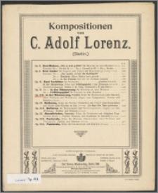 In der Dämmerung : Tonbild : E dur : für Harmonium (oder Klavier), zwei Violinen und Violoncell : Op. 19 B