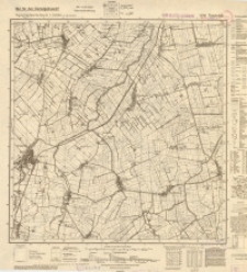 Neuteich 1880