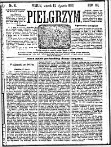Pielgrzym, pismo religijne dla ludu 1880 nr 6
