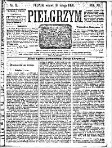Pielgrzym, pismo religijne dla ludu 1880 nr 17