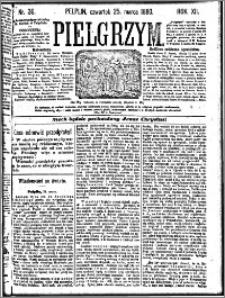Pielgrzym, pismo religijne dla ludu 1880 nr 36