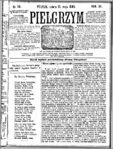Pielgrzym, pismo religijne dla ludu 1880 nr 56