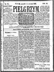 Pielgrzym, pismo religijne dla ludu 1880 nr 63