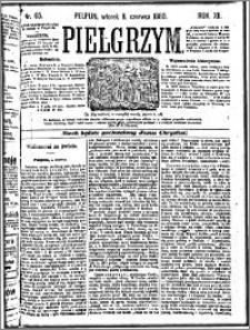 Pielgrzym, pismo religijne dla ludu 1880 nr 65