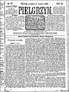 Pielgrzym, pismo religijne dla ludu 1880 nr 69