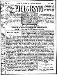 Pielgrzym, pismo religijne dla ludu 1880 nr 119