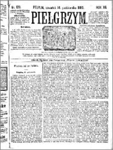 Pielgrzym, pismo religijne dla ludu 1880 nr 120