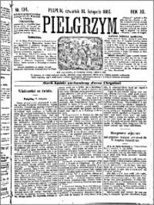 Pielgrzym, pismo religijne dla ludu 1880 nr 134