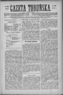 Gazeta Toruńska 1873, R. 7 nr 247