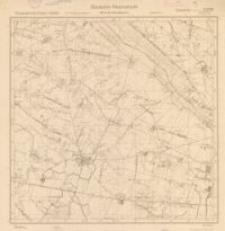 Ossenholz 3378 (2)