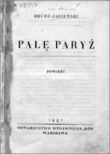 Palę Paryż : powieść