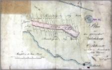 Plan von dem sogenandten Kukuksberge bey Eichhorst, innerhalb den Brombergschen Netz Wiesen belegen