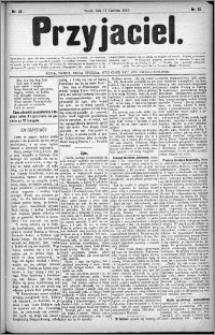 Przyjaciel : pismo dla ludu 1880 nr 25