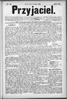 Przyjaciel : pismo dla ludu 1882 nr 28