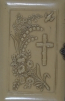 Aniół Stróż chrześcianina katolika : zbiór modłów i pieśni dla dusz pobożnych