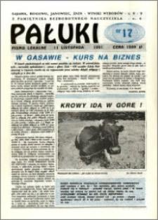 Pałuki. Pismo lokalne 1991.11.11 nr 17