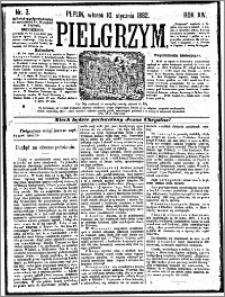 Pielgrzym, pismo religijne dla ludu 1882 nr 3