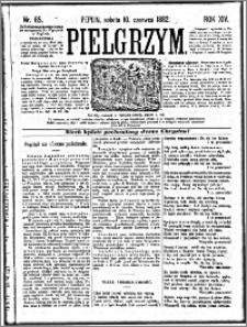 Pielgrzym, pismo religijne dla ludu 1882 nr 65