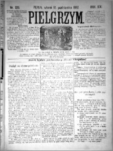 Pielgrzym, pismo religijne dla ludu 1882 nr 120