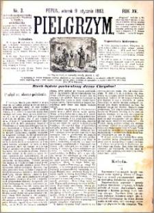 Pielgrzym, pismo religijne dla ludu 1883 nr 3
