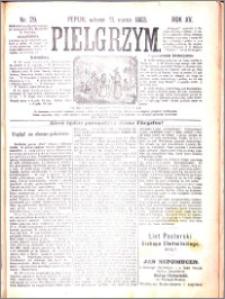 Pielgrzym, pismo religijne dla ludu 1883 nr 29