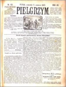 Pielgrzym, pismo religijne dla ludu 1883 nr 63