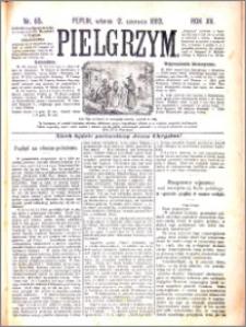 Pielgrzym, pismo religijne dla ludu 1883 nr 65