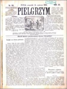 Pielgrzym, pismo religijne dla ludu 1883 nr 66