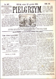 Pielgrzym, pismo religijne dla ludu 1883 nr 147