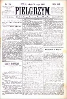 Pielgrzym, pismo religijne dla ludu 1884 nr 65