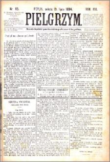 Pielgrzym, pismo religijne dla ludu 1884 nr 85